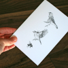CARD – Wildlife illustration featuring two birds and a bumblebee.