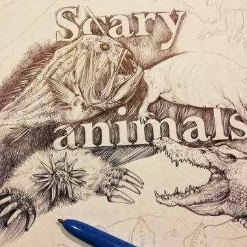 Scary animals – wildlife drawing