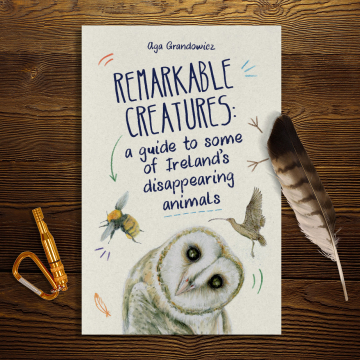 Remarkable Creatures: a guide to some of Ireland's disappearing animals