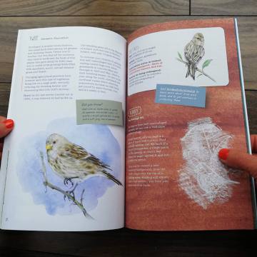 Remarkable Creatures: a guide to some of Ireland's disappearing animals, book by Aga Grandowicz_2