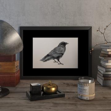 Crow – original artwork