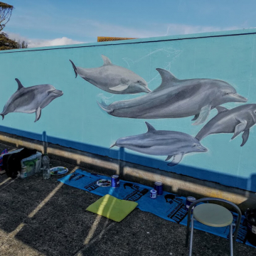 mural_in_greystones_dolphins1_by_aga-grandowicz.jpg