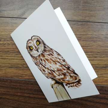 A6 CARD – Short-eared owl