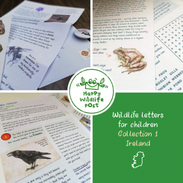 Three wildlife letters for children – COLLECTION 1 – Ireland