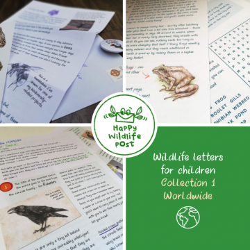 Three wildlife letters for children – COLLECTION 1 – Worldwide