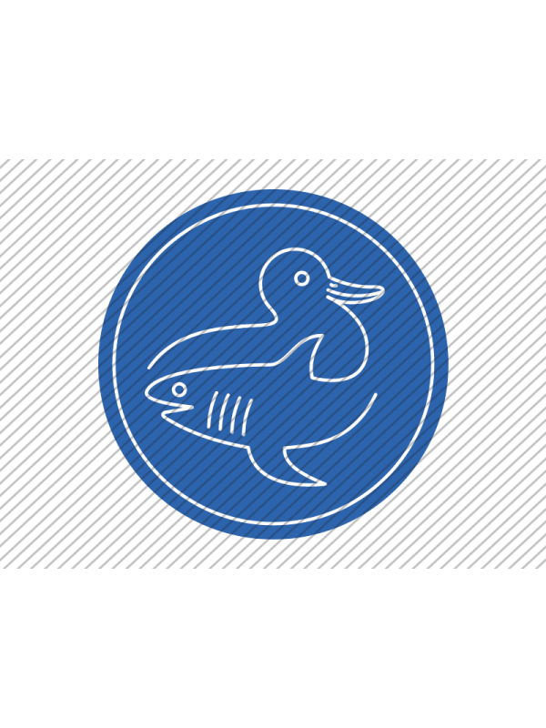 Predesigned duck and shark logo by Aga Grandowicz. Icon only.