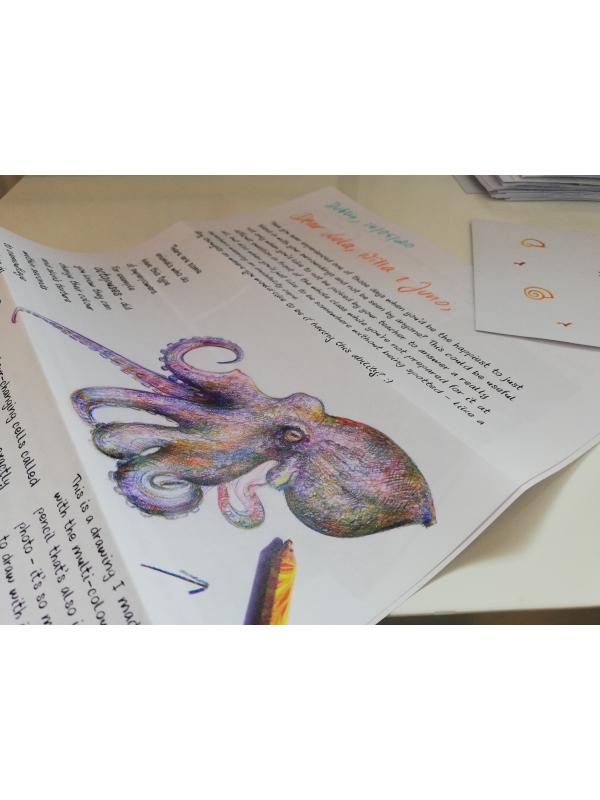 Wildlife letters for children by Aga Grandowicz | Happy Wildlife Post