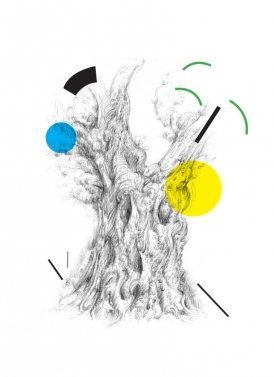 Drawing of an olive tree, graphic art by Aga Grandowicz