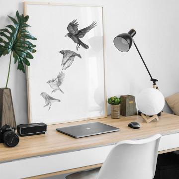 Garden birds #1 – fine art prints, limited edition for each size (40)