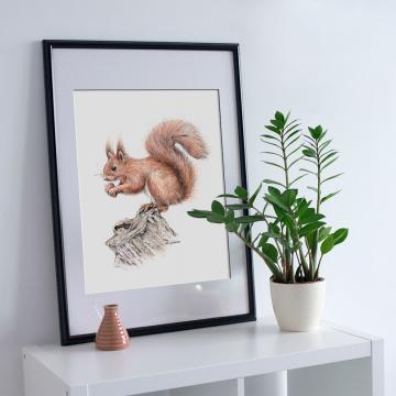 Squirrel, A4 fine art prints by Aga Grandowicz, unlimited edition