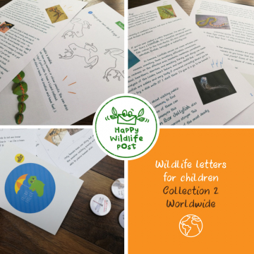 3 wildlife letters for children – COLLECTION 2 – Worldwide